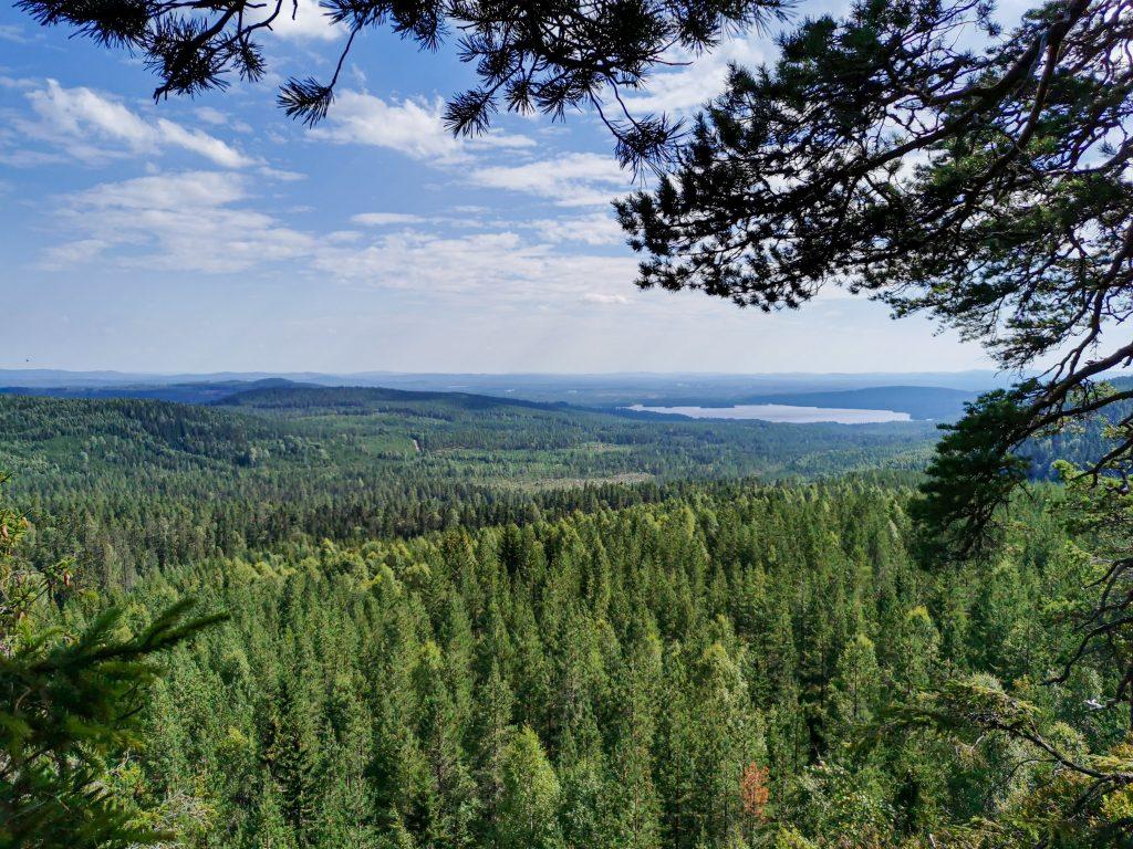 Milslång utsikt av skog, berg och sjöar.